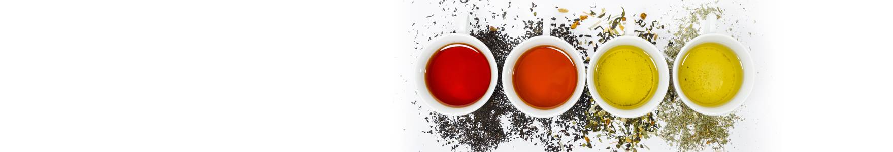 Tea Tasting Workshops