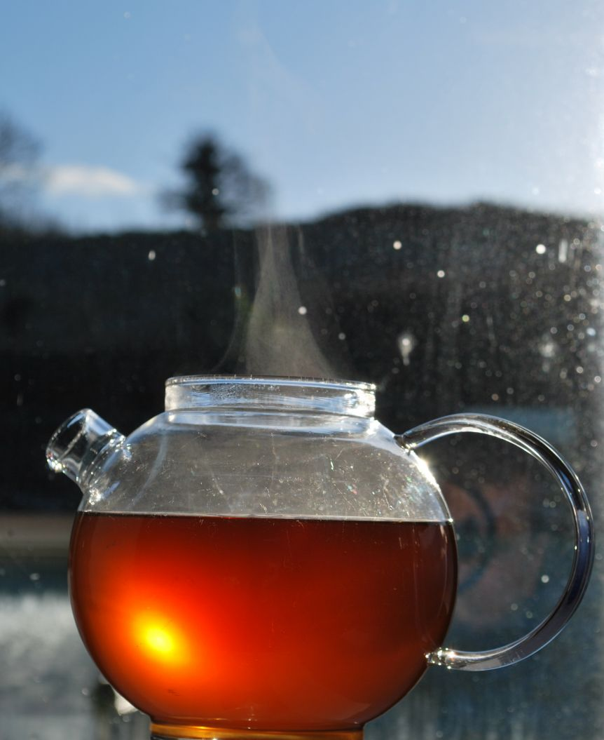 TEA OF THE MONTH - CHAI - NICE AND SPICY