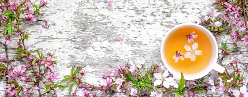 Celebrate Spring with a Cup of White Tea!